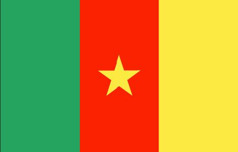 Camerun Radios