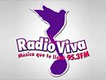 Radio viva 95.3 fm en vivo