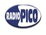 Radio Pico Mirandola