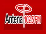 Antena Chihuahua